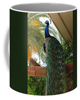 Proud Peacock Coffee Mug