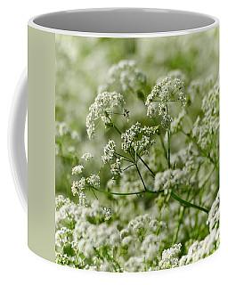 Queen Annes Lace Coffee Mug