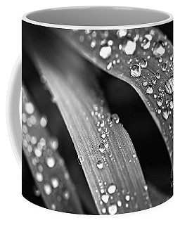Raindrops On Grass Blades Coffee Mug