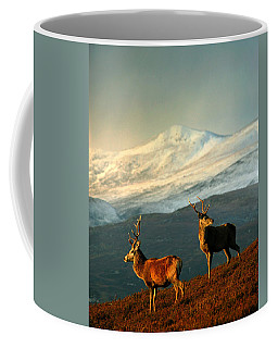 Red Deer Stags Coffee Mug