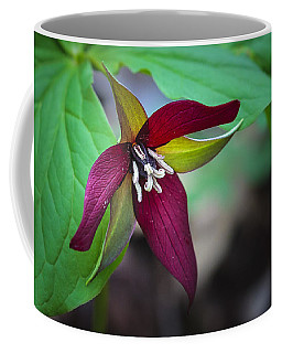 Red Trillium Coffee Mug