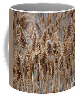Wind Blown Redish Brown Plants Coffee Mug