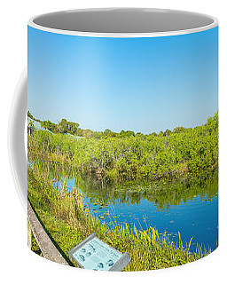 Reflection Of Trees In A Lake, Anhinga Coffee Mug