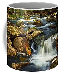 River Rapids Coffee Mug