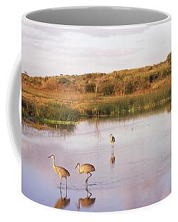 Sandhill Cranes Grus Canadensis Coffee Mug