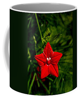 Scarlet Morning Glory Coffee Mug
