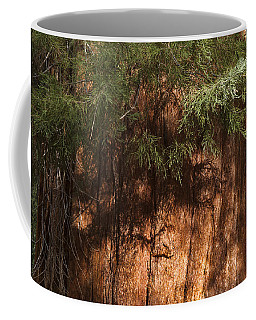 Sequoia Coffee Mug by Muhie Kanawati