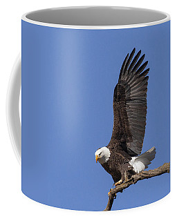 Smooth Landing 3 Coffee Mug