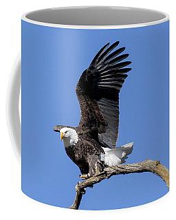 Smooth Landing 4 Coffee Mug
