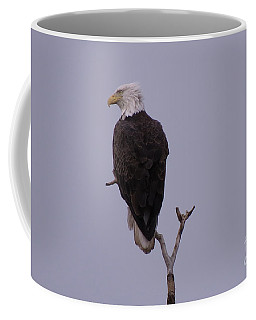 Solo  Bald Eagle Coffee Mug