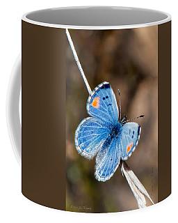 Sonoran Blue Coffee Mug by Jim Thompson