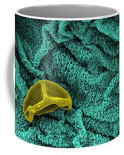 Spiderwort Petal, Sem Coffee Mug
