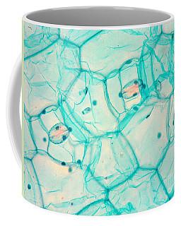 Spiderwort Stoma Lm Coffee Mug