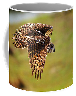 Coffee Mug featuring the photograph Spotted Eagle Owl In Flight by Nick  Biemans