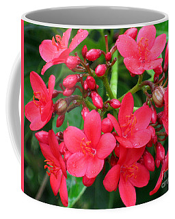 Lovely Spring Flowers Coffee Mug