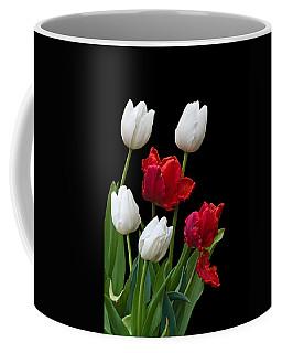 Spring Tulips Coffee Mug by Jane McIlroy
