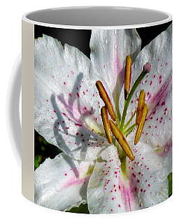 Stargazer Lily Coffee Mug by Lynn Bolt