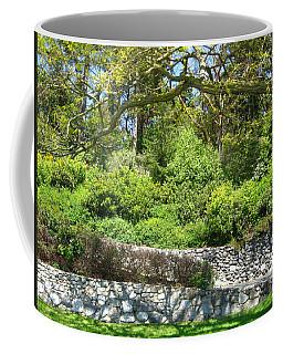 Stone Wall 1 Coffee Mug by David Trotter