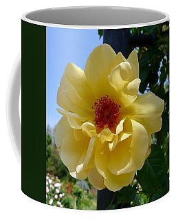 Sunny Yellow Rose Coffee Mug