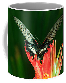 Coffee Mug featuring the photograph Swallowtail by Tam Ryan