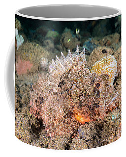 Tasseled Scorpionfish Camouflaging Coffee Mug