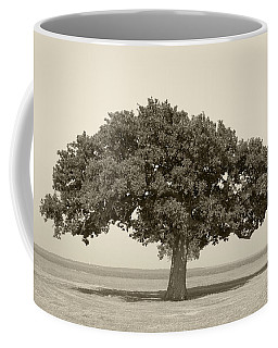 The Lonely Tree Coffee Mug by Charles Beeler