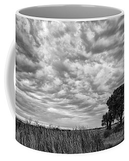 The Right Tree Coffee Mug