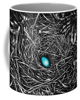 The Robin's Egg Coffee Mug