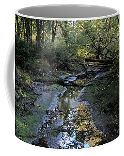 Coffee Mug featuring the photograph Tidal Stream by I'ina Van Lawick