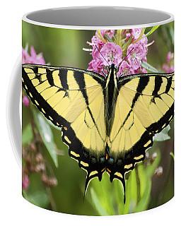 Tiger Swallowtail Butterfly On Milkweed Flowers Coffee Mug