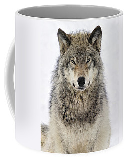 Timber Wolf Portrait Coffee Mug