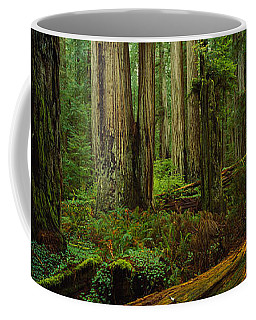 Trees In A Forest, Hoh Rainforest Coffee Mug