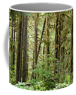 Trees In A Forest, Quinault Rainforest Coffee Mug