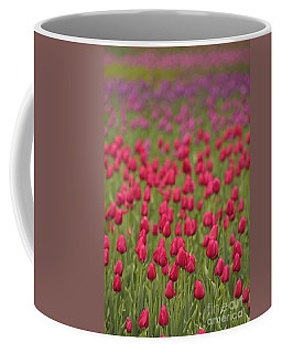 Tulip Beds Forever Coffee Mug