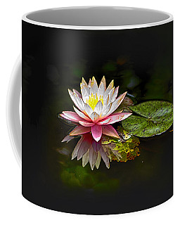 Water Lily Coffee Mug