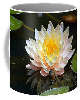 Coffee Mug featuring the photograph Water Lily by Lisa L Silva