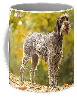 Wire-haired Pointing Griffon Coffee Mug