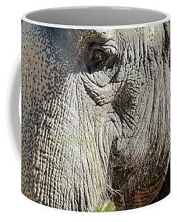 Wise One,elephant  Coffee Mug