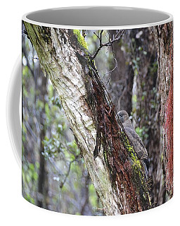 Young 'io Hawaiian Hawk Coffee Mug