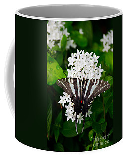 Zebra Swallowtail Coffee Mug