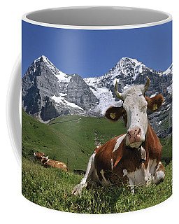 100205p181 Coffee Mug by Arterra Picture Library