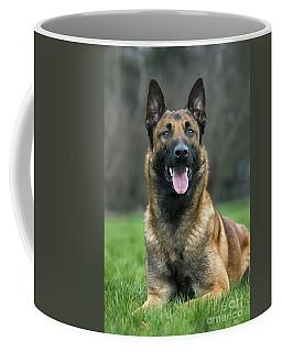101130p022 Coffee Mug