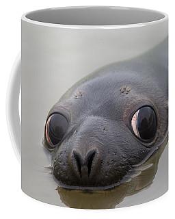 110714p127 Coffee Mug