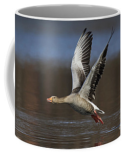 120223p134 Coffee Mug