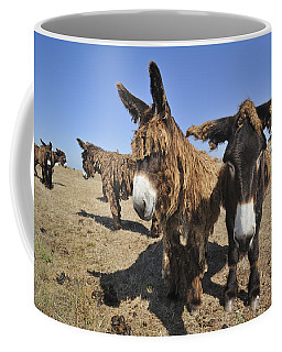 Coffee Mug featuring the photograph 120920p029 by Arterra Picture Library