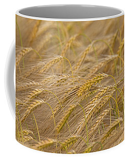 Coffee Mug featuring the photograph 130109p155 by Arterra Picture Library