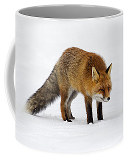 Coffee Mug featuring the photograph 130201p052 by Arterra Picture Library
