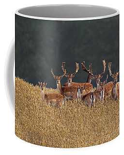 Coffee Mug featuring the photograph 130201p298 by Arterra Picture Library