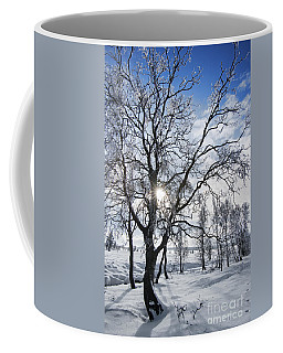 Coffee Mug featuring the photograph 130201p341 by Arterra Picture Library