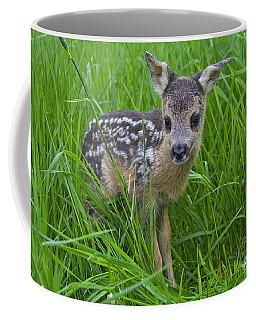 131018p162 Coffee Mug